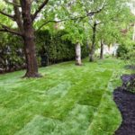 A new sod job we wrapped up in Nepean